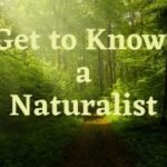 Get to Know a Naturalist